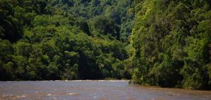 Lei da Água – Código Florestal