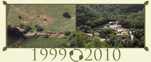 Instituto Terra de 1999 a 2010