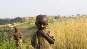 Não, as Gigantescas Monocultoras Não Estão Alimentando o Mundo